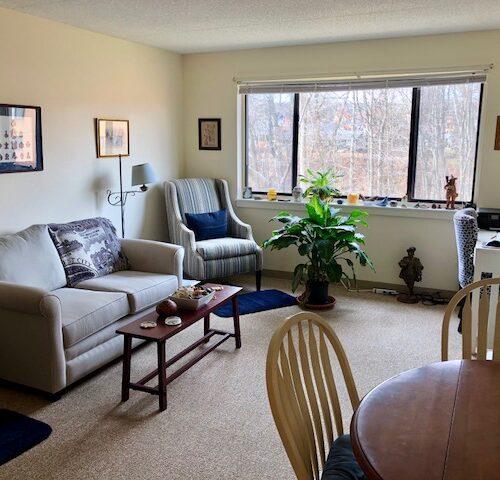 One_Bedrrom_Living_Room